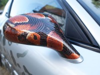 Snake skin effect hydrographics showcased on wing mirror