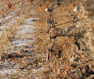 realtree-camo-pattern-realtree-ap-05
