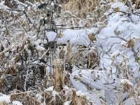 realtree-camo-pattern-realtree-ap-snow-04