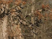 realtree-camo-pattern-realtree-hardwoods-02