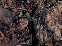 realtree-camo-pattern-realtree-hardwoods-03