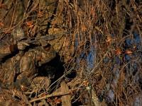 realtree-camo-pattern-realtree-hardwoods-04