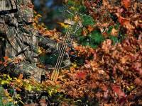realtree-camo-pattern-realtree-hardwoods-green-03